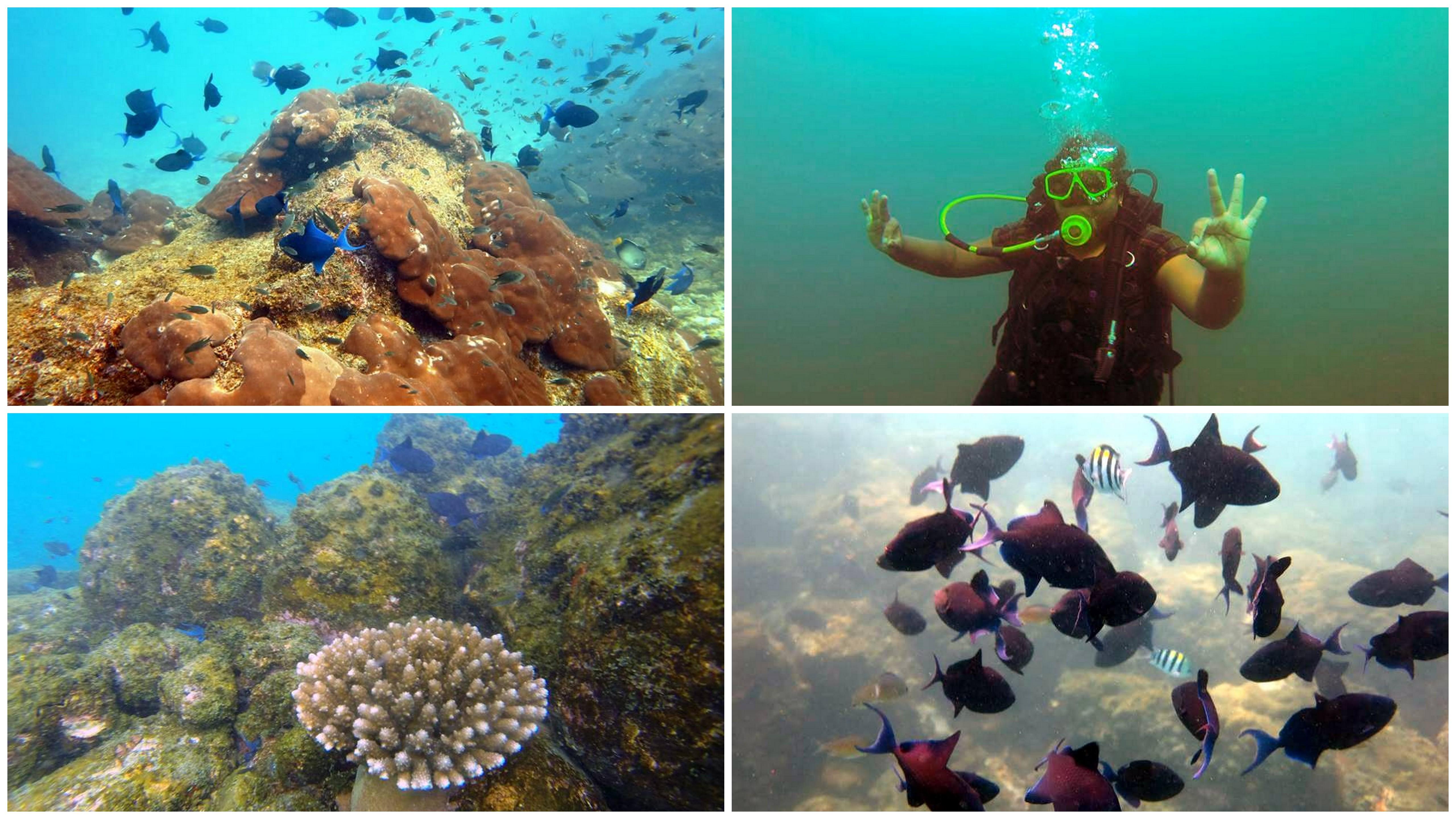 earth day - nethrani islands