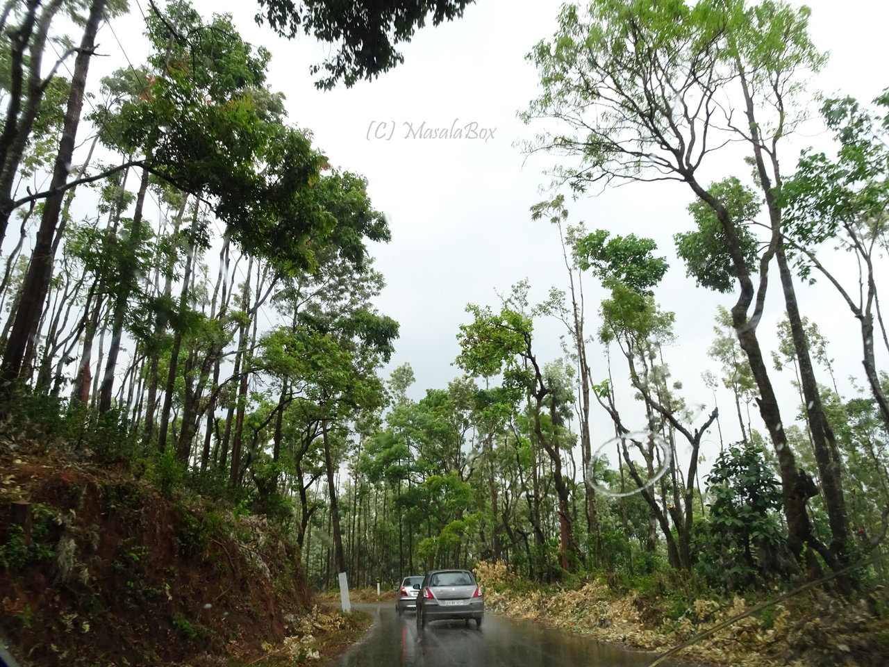 Chikmagalur - wet roads and greenery