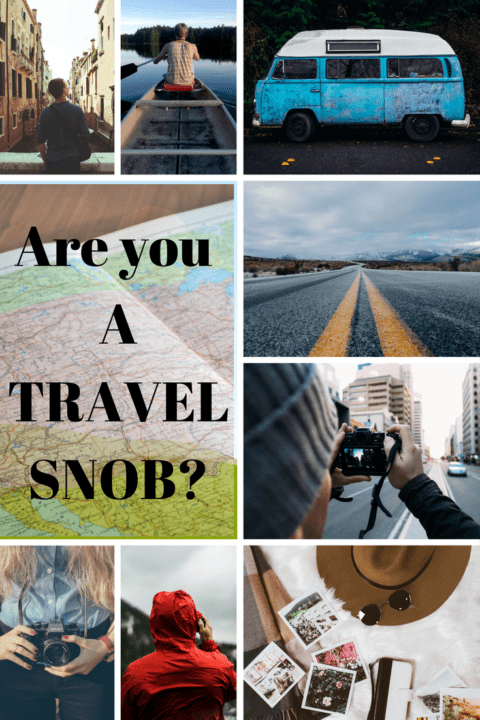 Travel snob pin