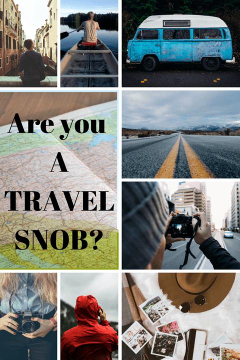 Travel snob pin