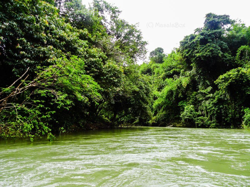 Canoe_Sok_river