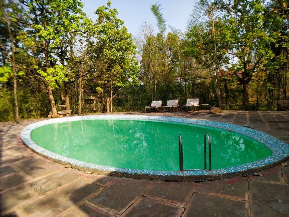 Swimming pool Pench Jungle Camp