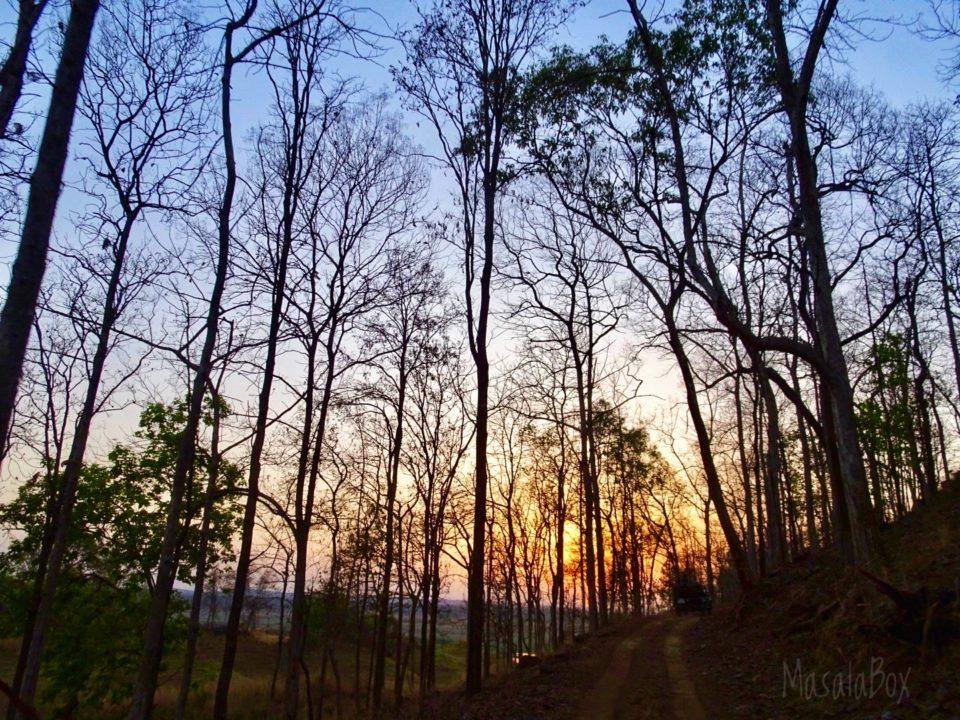 sunrise Satpura National Park