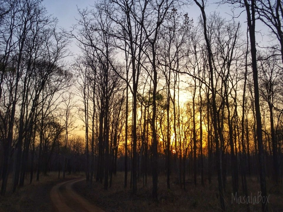 Sunrise Satpura