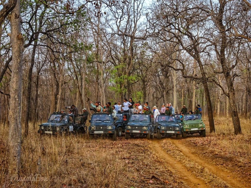 jeeps Satpura National Park