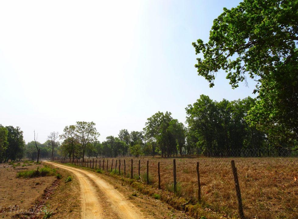 Boma Kanha National park
