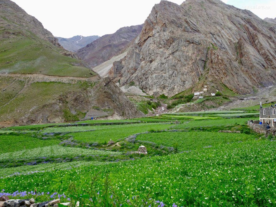 farms pin valley
