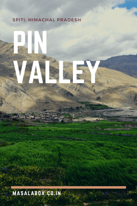 Pin Valley - Pinterest