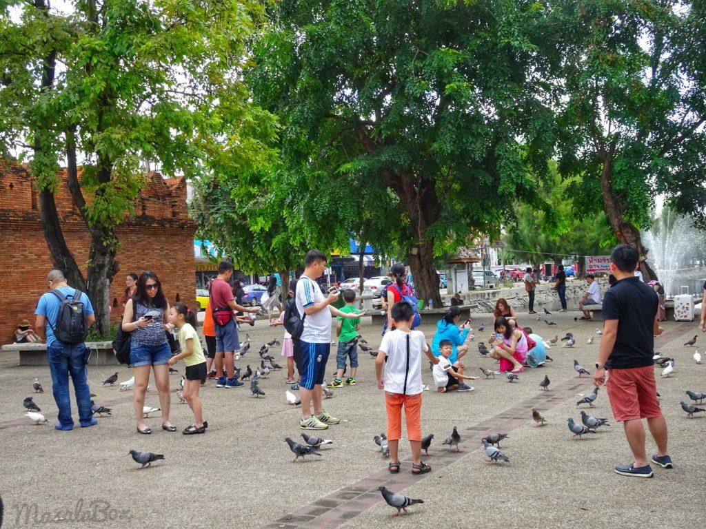 tha pae gate Chiang Mai