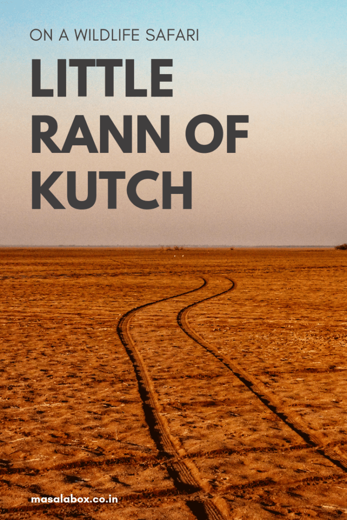Little Rann of Kutch