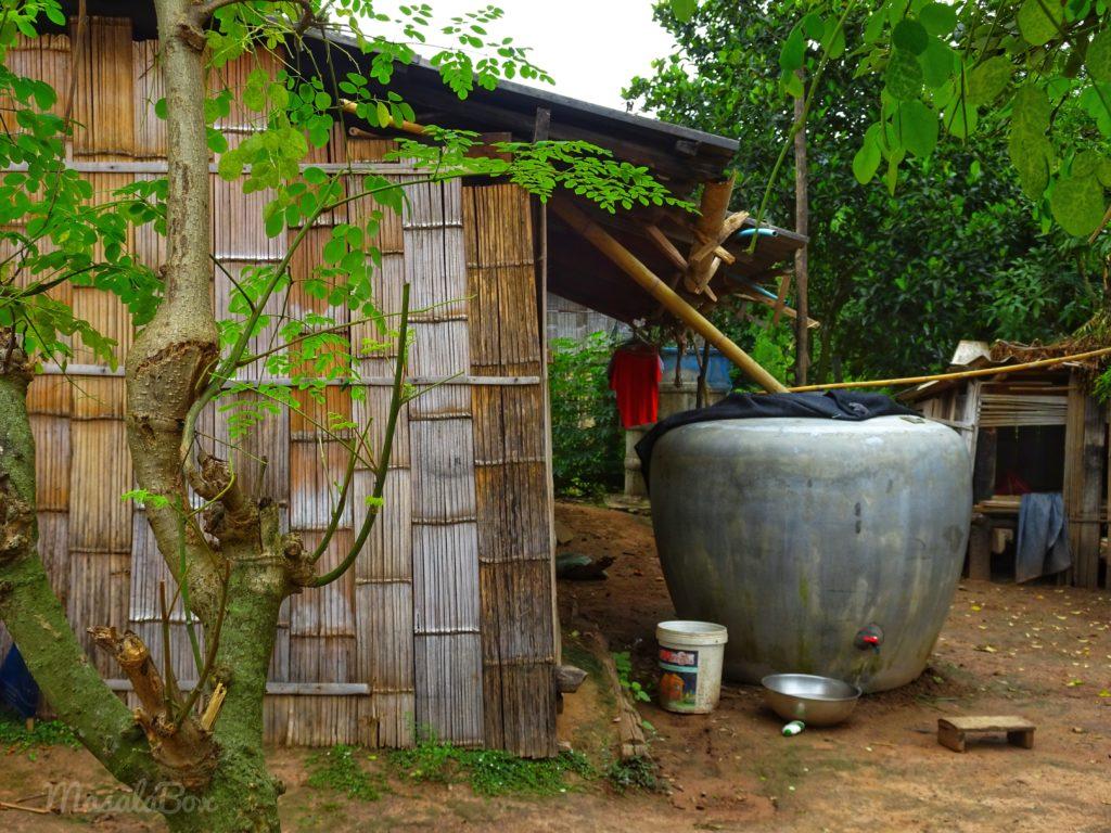 palong village