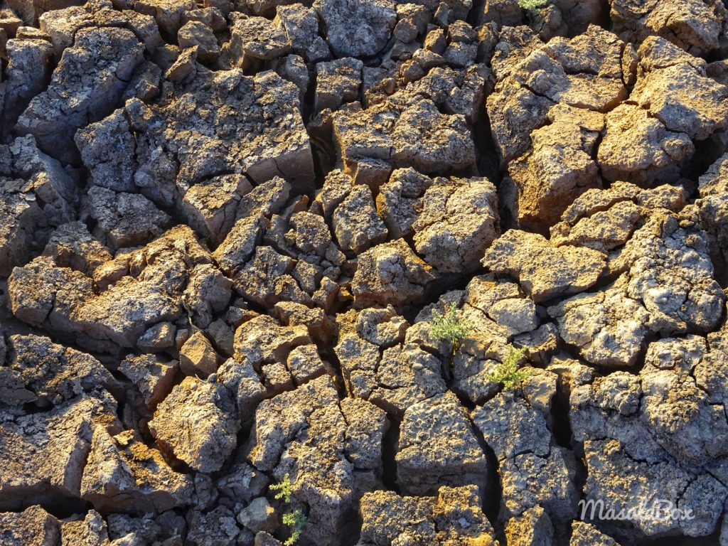 parched earth gujarat