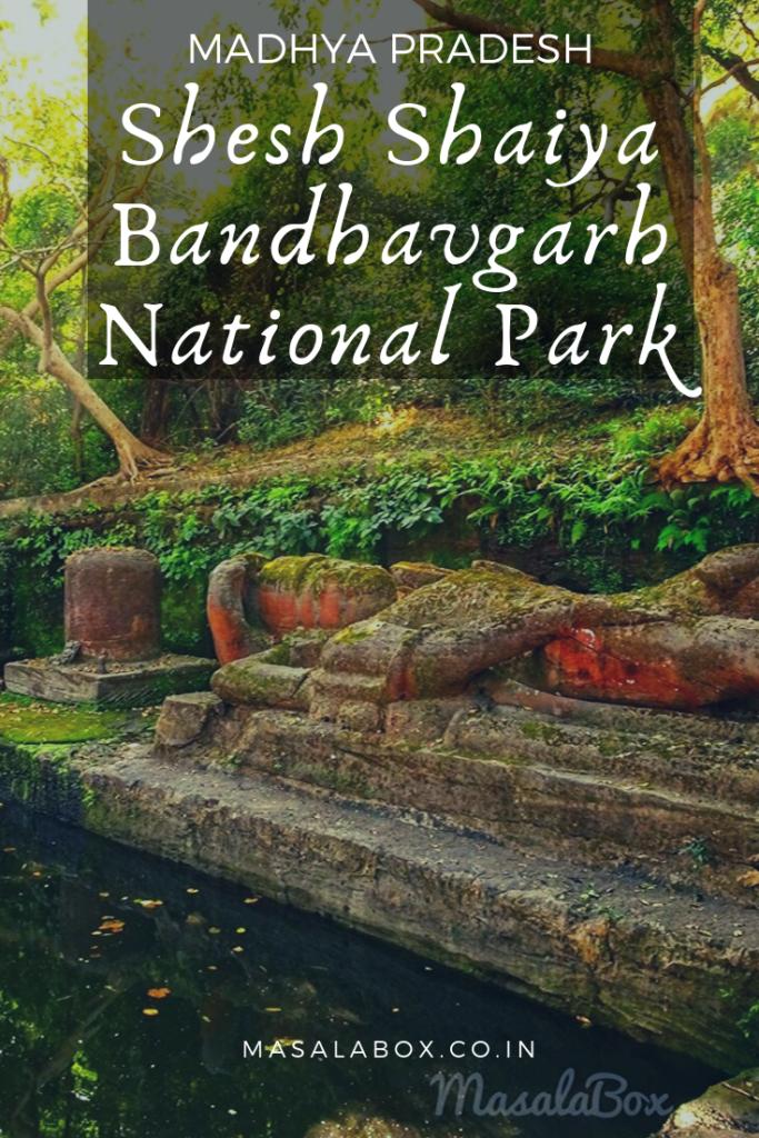 Pin it - Shesh Shaiya of Bandhavgarh National Park