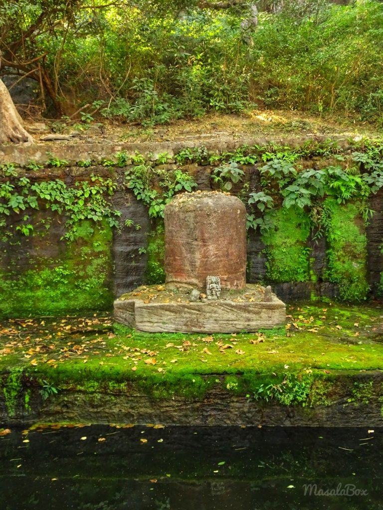 Shiva Bandhavgarh