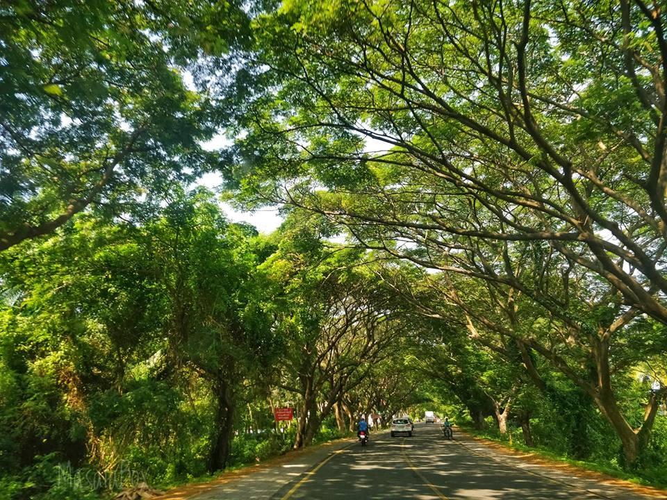 chennai highway