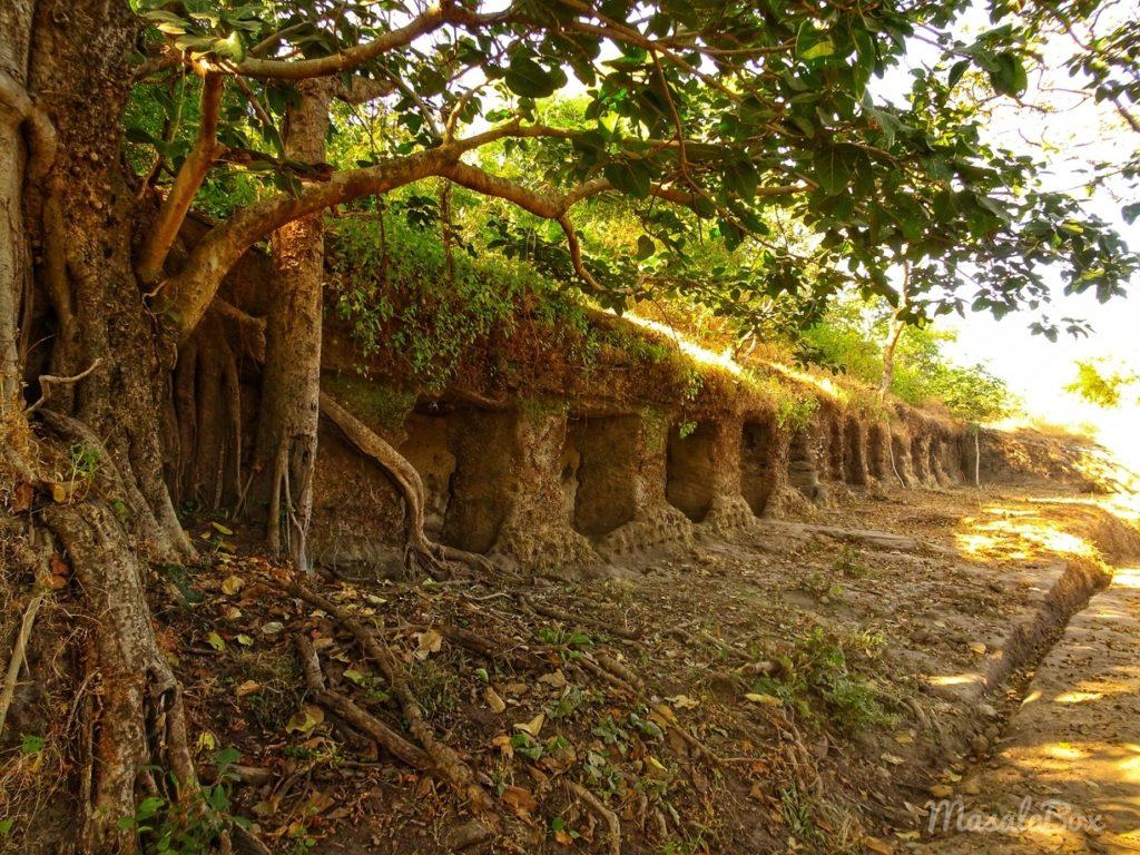 horse stable Bandhavgarh fort